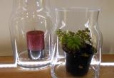Vase oder Windlicht