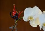 Orchideenhalter